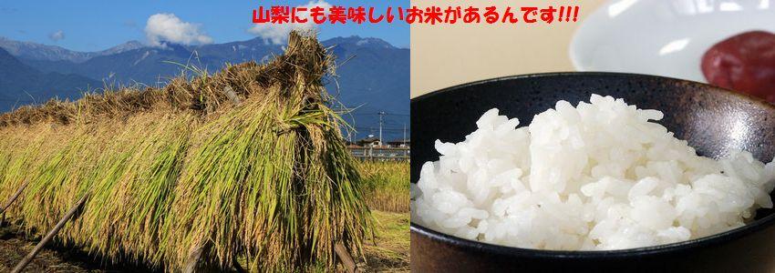 農林48号、武川コシヒカリ、ますや米店