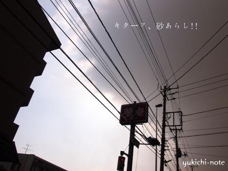 P3103033-001.jpg