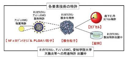 110228_共同研究実施者の特許技術