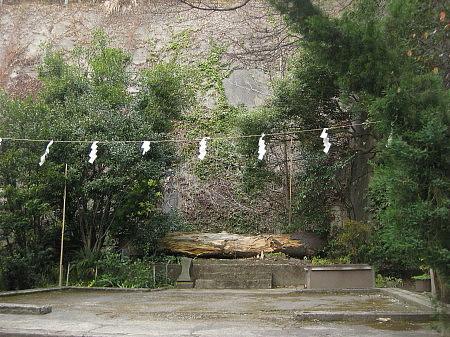kanagawa03.jpg