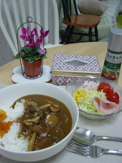 フンギカレーとお花サラダ