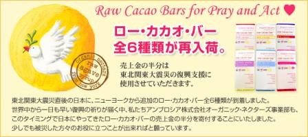 cacaobar_3.jpg
