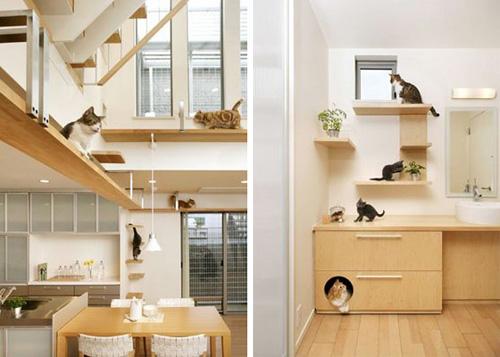 cathouse3.jpg