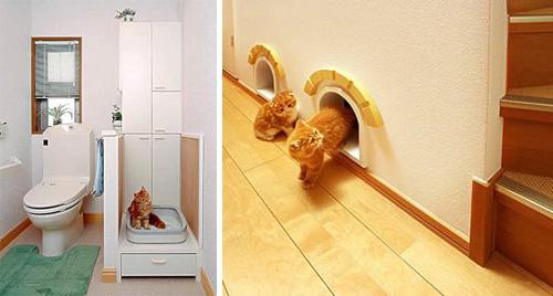 cathouse4.jpg