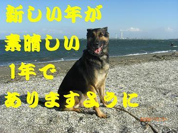 CIMG5590_sh01.jpg