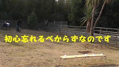 s_20091225143215.jpg