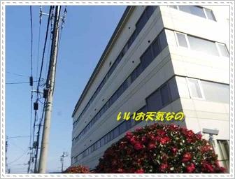 IMGP3840.jpg