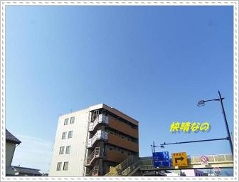 IMGP3885.jpg