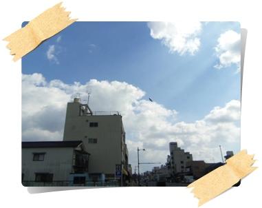 IMGP4294.jpg