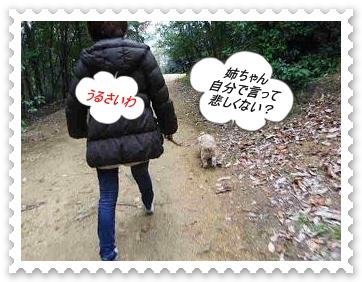 IMGP4574_20130301235009.jpg