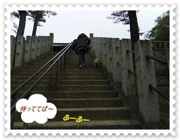 IMGP4581.jpg