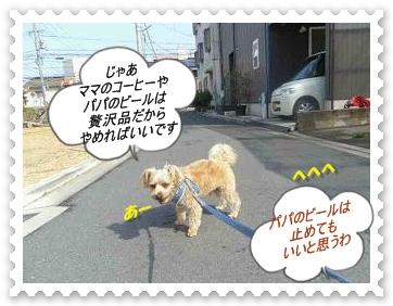 IMGP5498_20130320001120.jpg