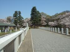 狭山湖(去年)1