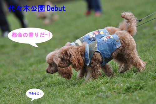 DSC_0216cut.jpg