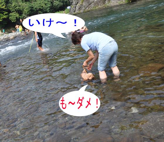 DSC_0384a.jpg