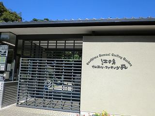 鎌倉11 216