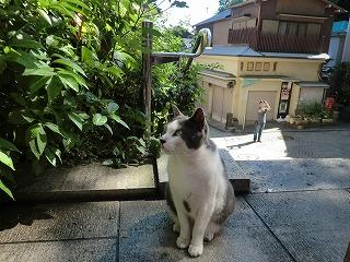 鎌倉11 193