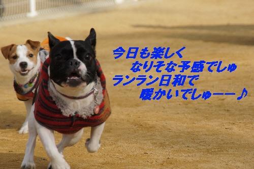 007_20100118095235.jpg