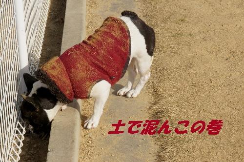 022_20100111134831.jpg