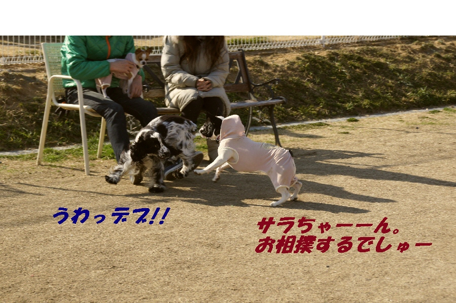 069_20100223190847.jpg