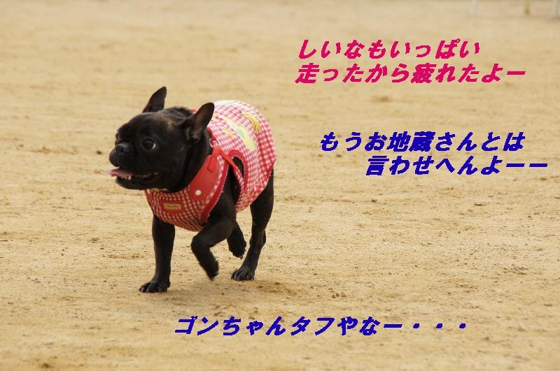 070_20100330215201.jpg