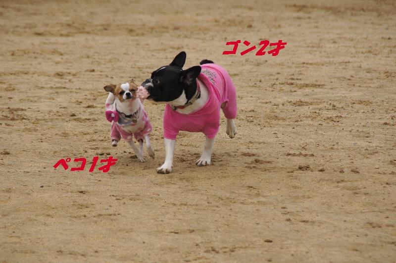 11_20100413105721.jpg