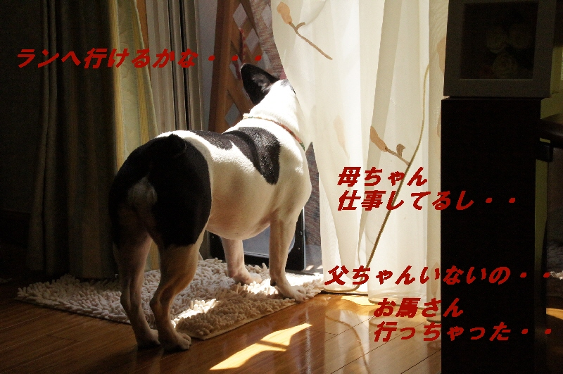 1_20100419162716.jpg