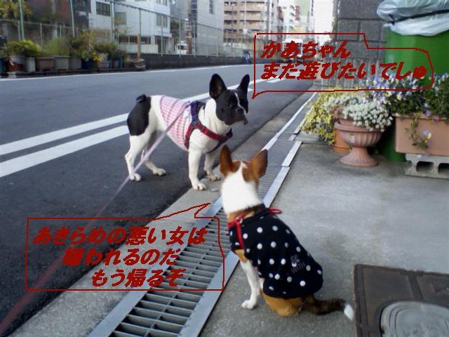 2_20100514202348.jpg
