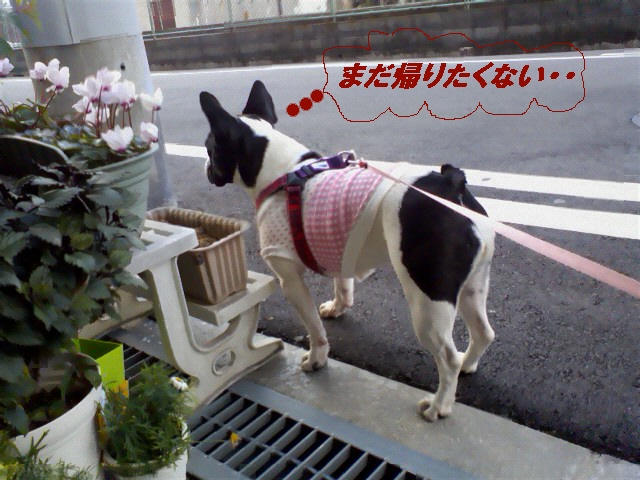 3_20100514202348.jpg