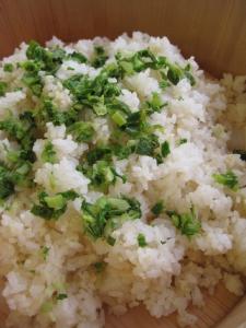 雑穀基本ひえ20120212_4