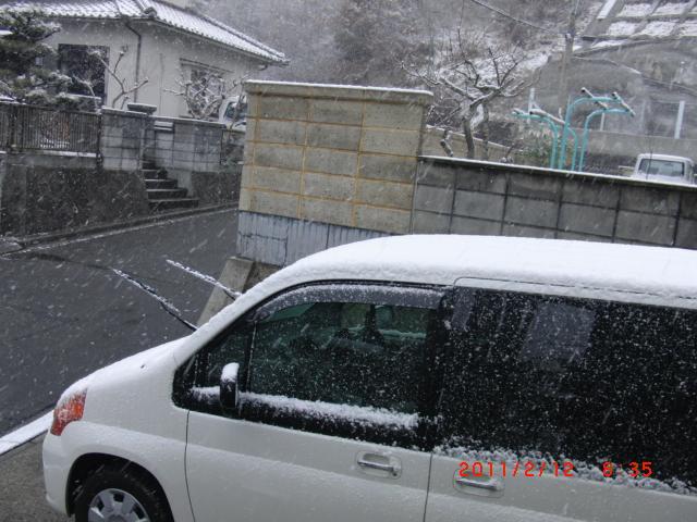 2011.02.11.2
