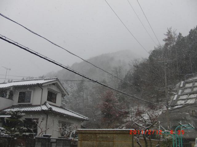 2011.02.11.4