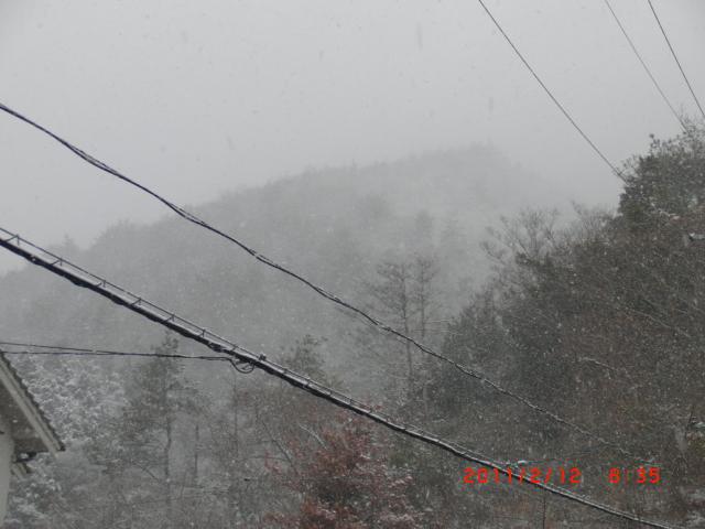 2011.02.11.5