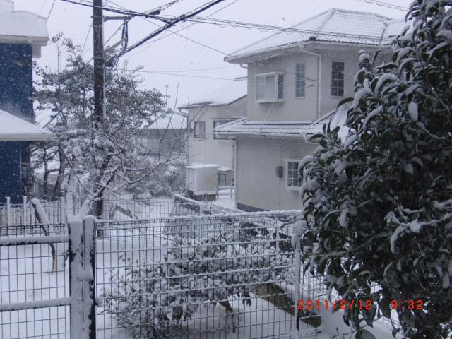 2011.02.12.7