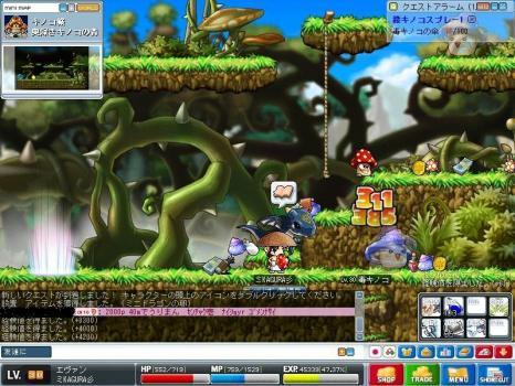 Maple100727_172533.jpg