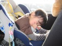 めいちゃん寝顔