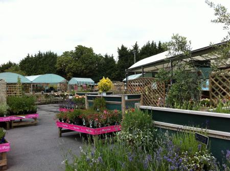 gardencenter1.jpg
