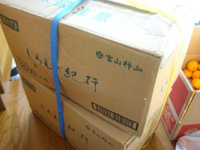 001_400_20091225005142.jpg