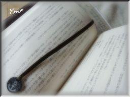002_256_20100903072453.jpg
