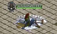 yuzukomati