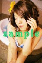 srin_b261.jpg