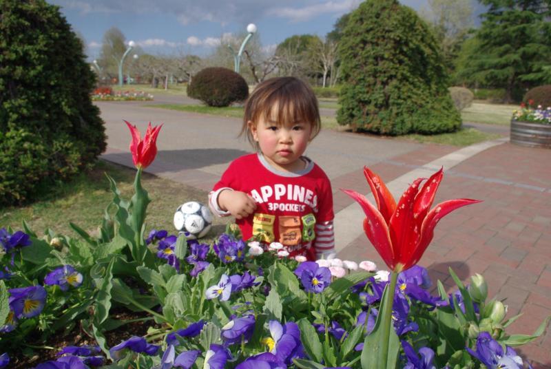 お花とガーコ♪