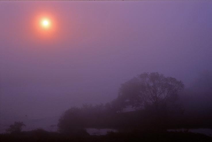 霧の朝(木津川)01b