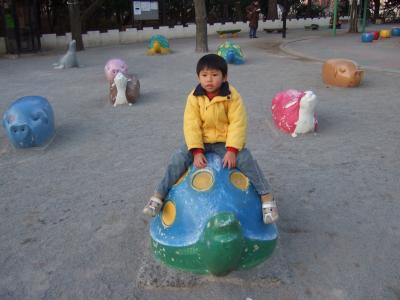 1001090073_convert_20100110063455.jpg