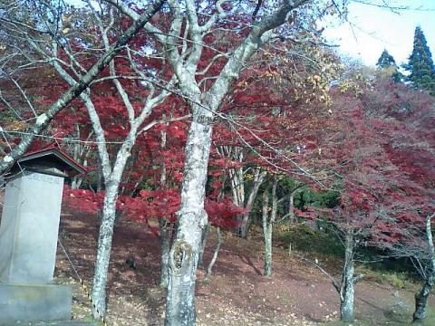神社の小径4;土津神社