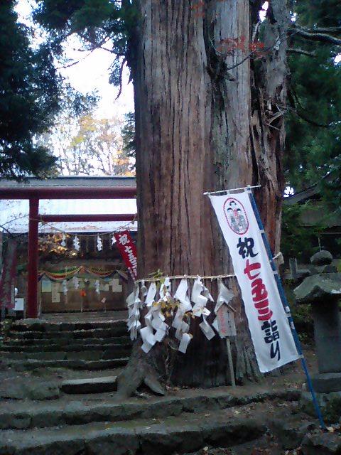 神社の小径14;磐椅神社