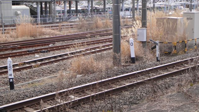 DSC04137.jpg