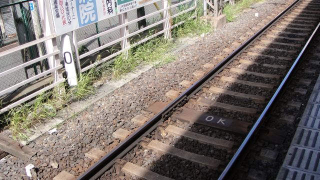 DSC06783.jpg