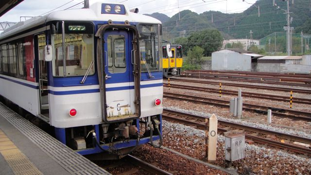 DSC07808.jpg