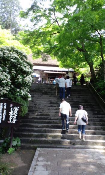 大興善寺5